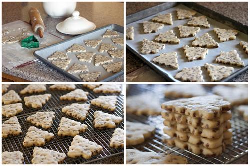 chocolate chip christmas tree cookies